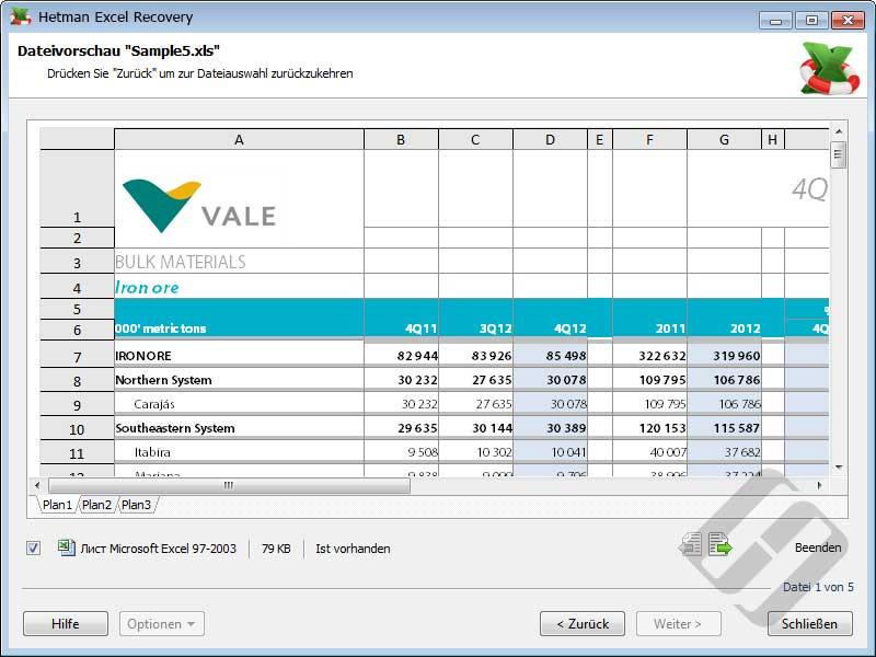 Hetman Excel Recovery: Anzeigen von XLS-Dateien