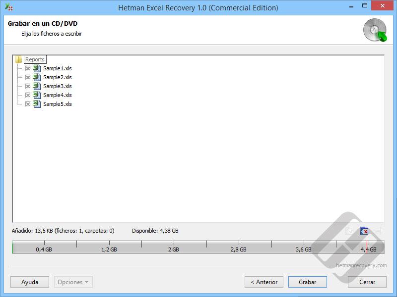 Hetman Excel Recovery: Selección de archivos para Burning