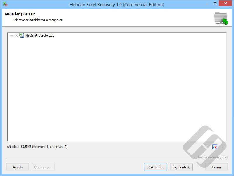 Hetman Excel Recovery: Selección de archivos para la carga