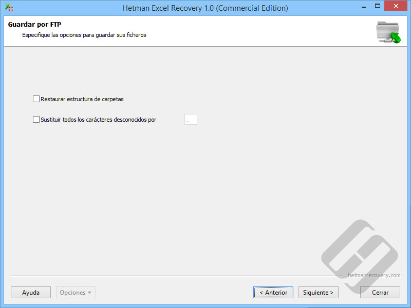 Hetman Excel Recovery: Guardar archivos en Directorio