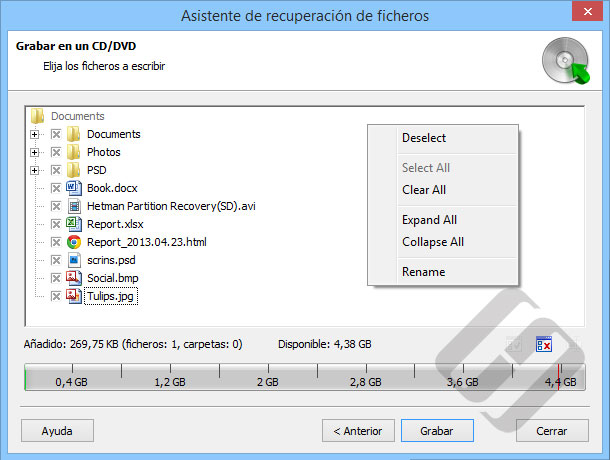 Hetman NTFS Recovery: Selección de archivos para Burn