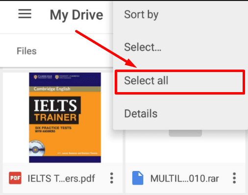 Google Drive App. Select all