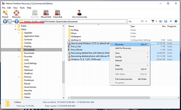 Hetman Partition Recovery. After the analysis, the application will show the directory tree of the scanned disk.