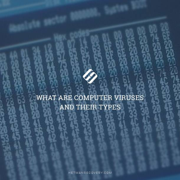 What are Computer Viruses and Their Types