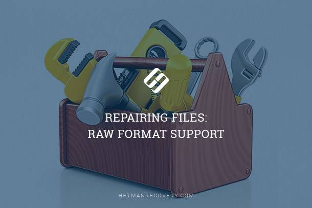 Repairing Files: RAW Format Support