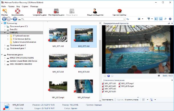 Hetman Partition Recovery.  Программа отобразит все видео файлы, которые возможно восстановить