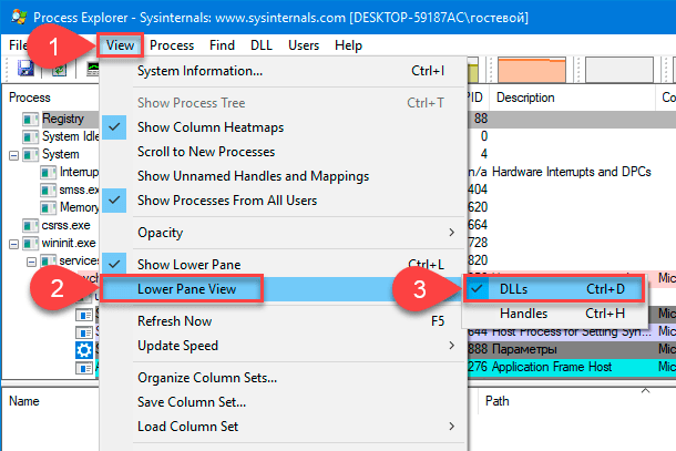 Process Explorer. Lower Pane View