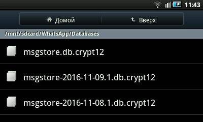 Картинки по запросу вотсап Папка msgstore db crypt12