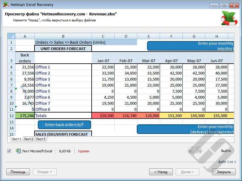 Hetman Excel Recovery – предварительный просмотр