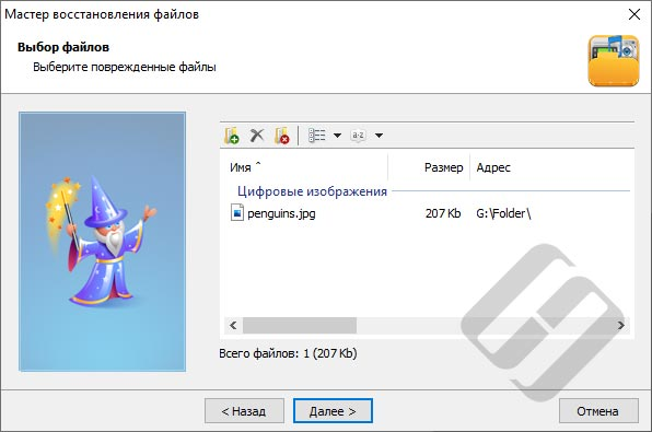 Hetman File Repair – выбор файлов для исправления