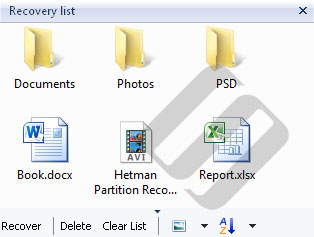 Hetman Partition Recovery: List of Files