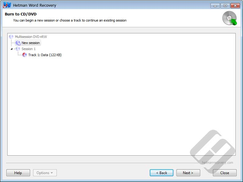 Hetman Word Recovery: Multi Session Support