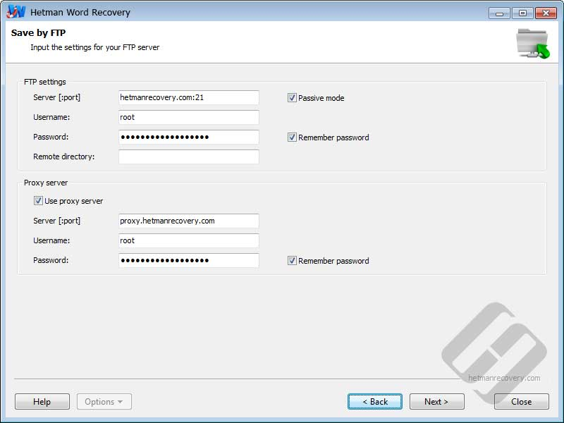 Hetman Word Recovery: Authorization Options